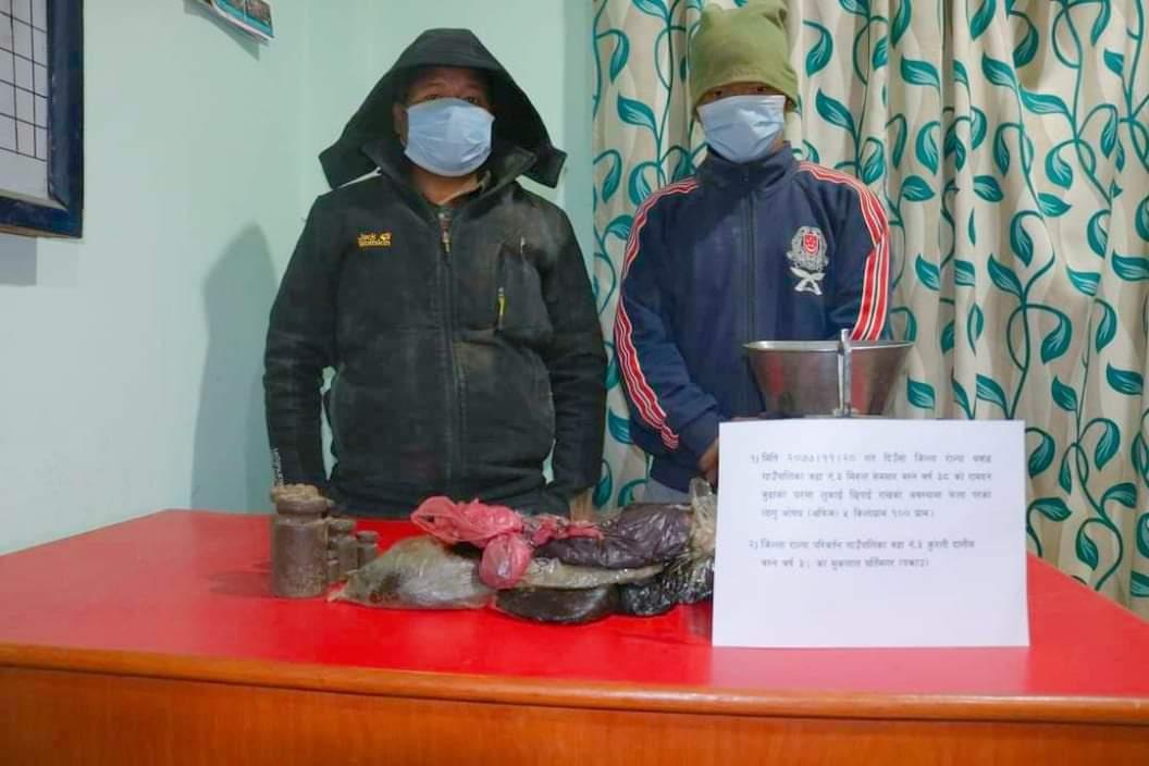 रोल्पा प्रहरीले ५ किलो १०० ग्राम लागुऔषध अफिम सहित २ जना पक्राउ