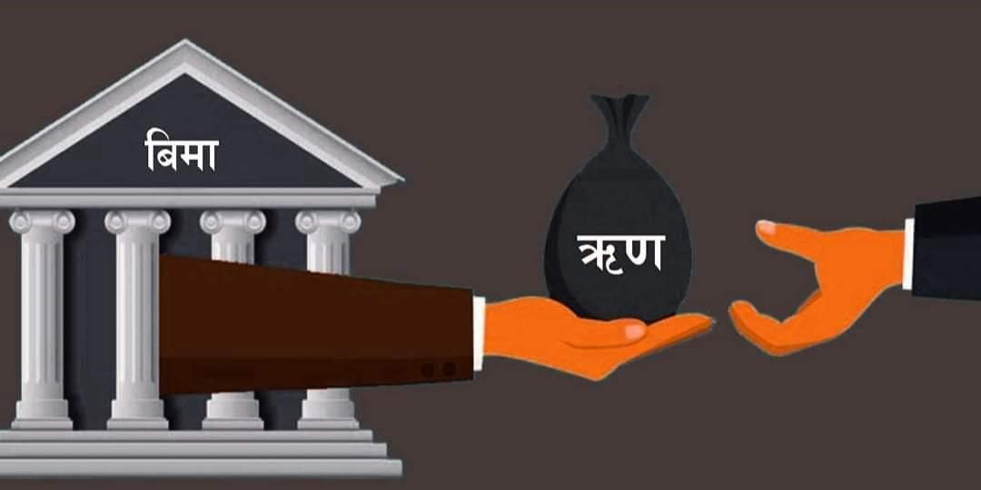 बिमा कम्पनीहरुको कर्जा ब्याज बैंकको भन्दा धेरै महँगो