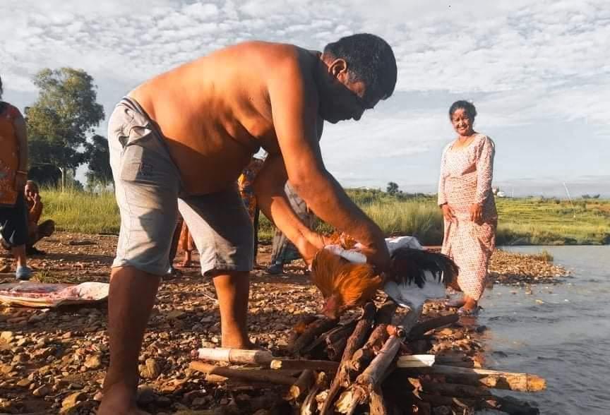 दाङमा भाले मर्दा पुरा गाउँले मलामी गए मालिकले कपाल फाले नुन छोडे